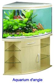 aquarium d'angle